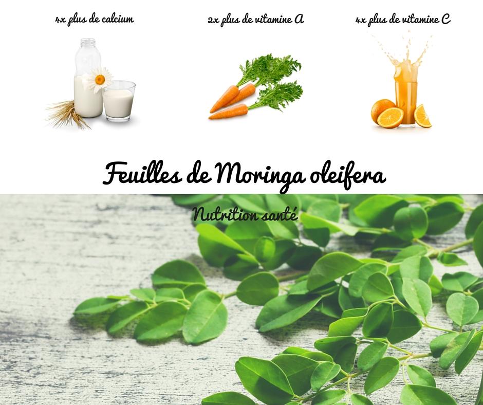 Moringa complément alimentaire nutrition santé