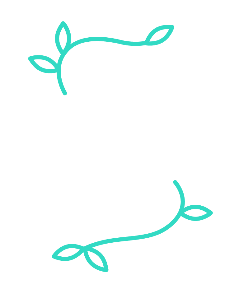 Les Phytonautes
