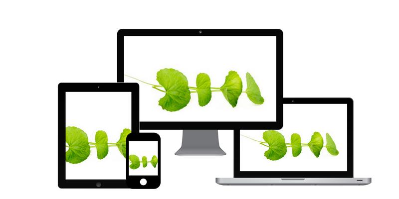 création site internet compléments alimentaires nutrition santé