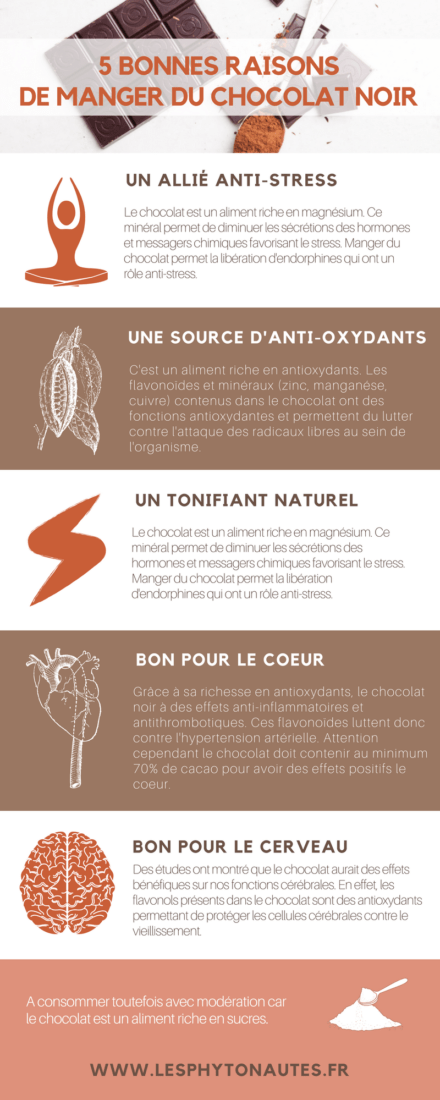 chocolat santé nutrition