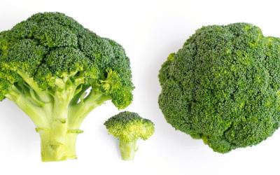 Tous les bienfaits du brocoli concentrés en un extrait !